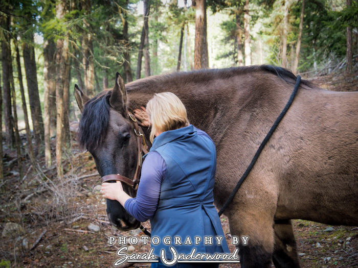 Equine bodywork in Kamloops