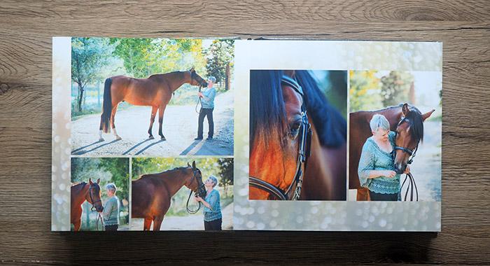 Horse and rider album